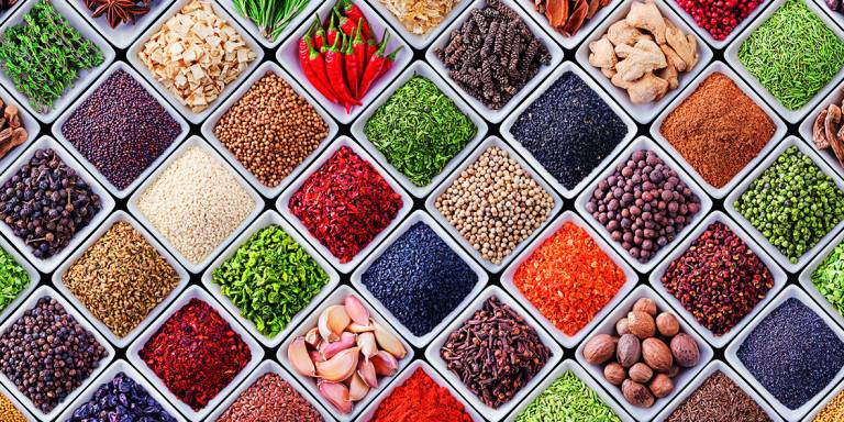 Canvas 0241 50×100 spices