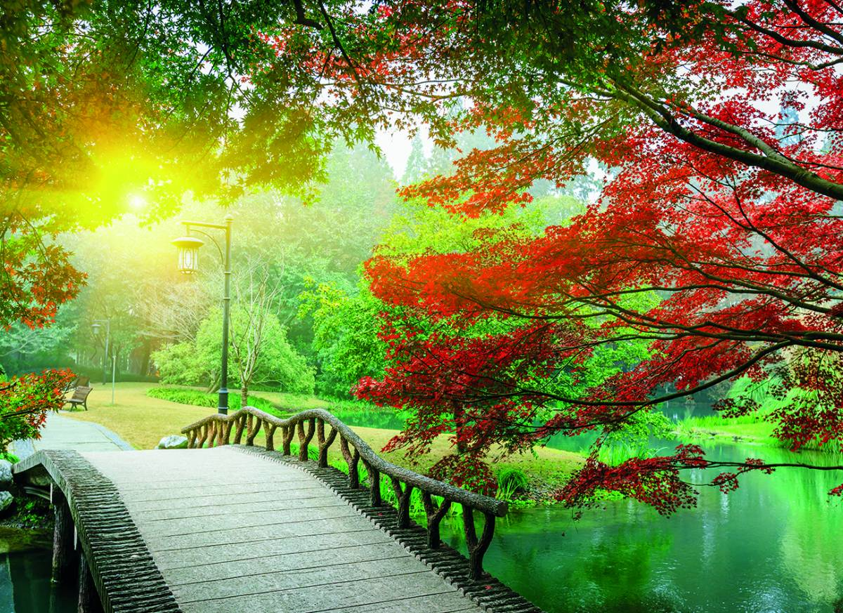 Canvas 0272 80×110 japanes garden