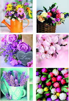 Canvas mixh 6  25×25 flowers