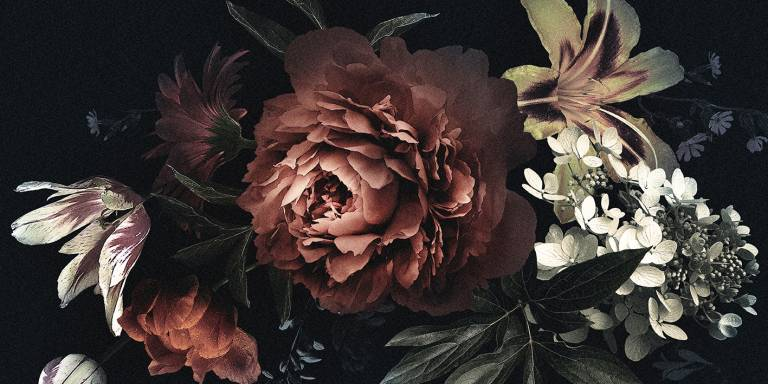 Canvas 0355 50×100